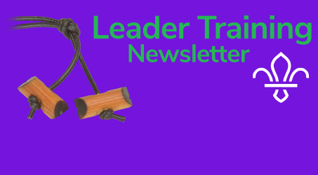 Training Newsletter Issue 3